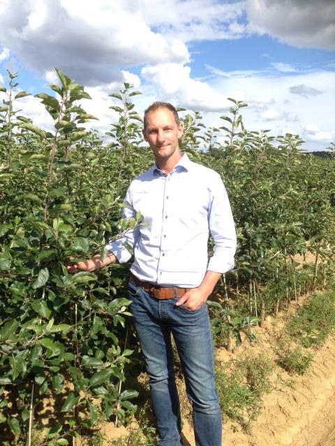 3 aktuella frågor om svenska äpplen