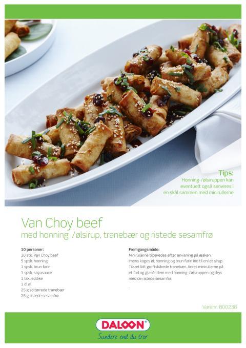 Opskrift: Miniruller Van Choy med oksekød. Serveres med honning/øl sirup, tranebær og ristede sesamfrø