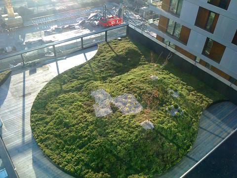 Grønne tak I tillegg byr på trivelige, økologiske og anvendelige grønne lunger i tette byområder.