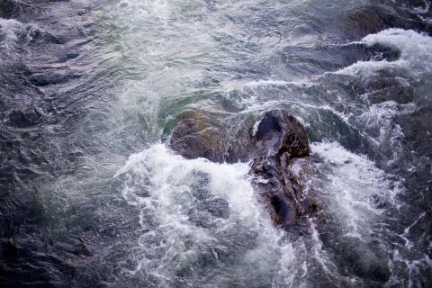 Beslut om nya åtgärder för bättre vatten i Dalarna