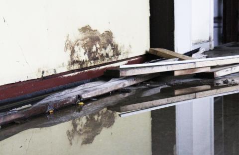 Stormfloden sender bakterier fra kloakken indenfor