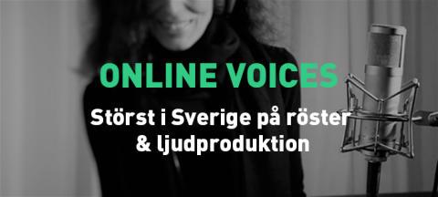 Marknadsansvarig till Online Voices