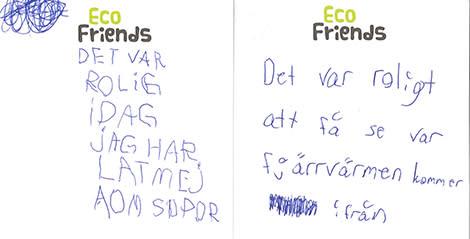 Eco Friends kan vinna pris för sin utbildningsinsats