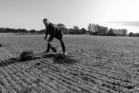 Norra Europas största lakritsrotsplantage är nu invigt