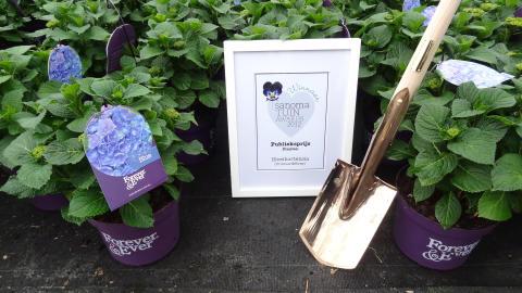 Forever&Ever vinner pris för bästa trädgårdsplanta 2012