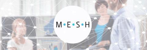 Powel Mesh – avanserte analysemuligheter for kraftprodusenter