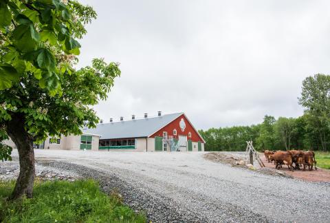 Invigning ny ladugård på Gäddeholm