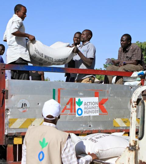 Lake Chad crisis - Food distrubution