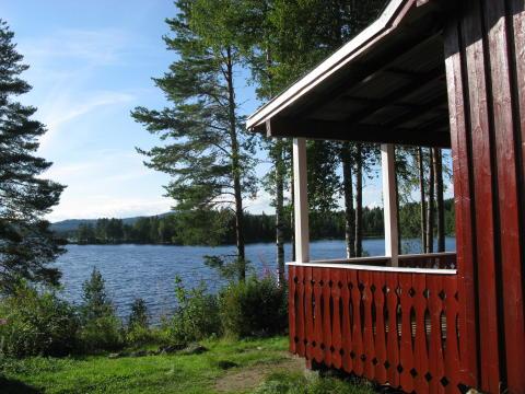 Nordre Borthuskoia i Hedmark Foto: Ivar Rustad