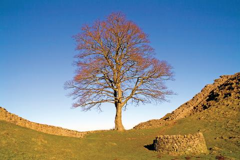 Ramblers Walking Holidays Hadrian's Wall