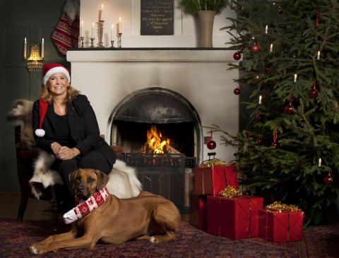Kombinera julbordet med avkoppling på Loka Brunn