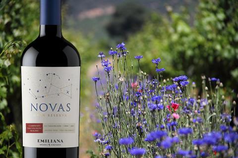 Nyhet 1 september – Novas Cabernet Sauvignon Malbec