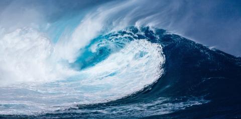 Hagainitiativet skriver under FN:s upprop för hållbar utveckling av världshaven