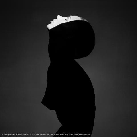 """Джордж Мейер. Из серии """"Свет. Тени.  Идеальная женщина"""""""