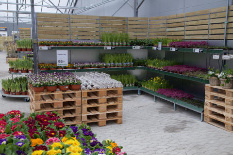 Blomsterlandet-butik-tradgardsmarknad-Lund2019
