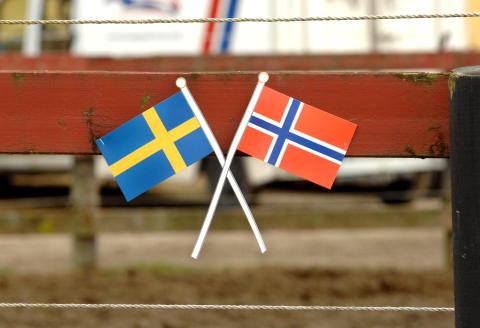 V75 i Norge med tre mäktiga årsdebutanter