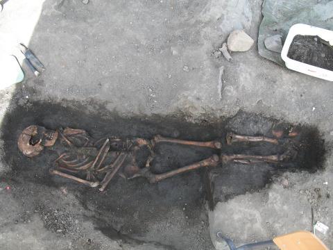 Medeltida skelett från Sigtuna