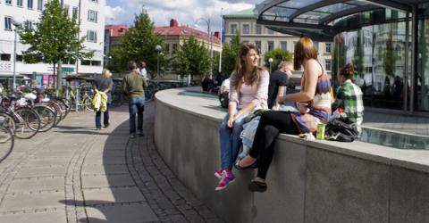 Mer varierat utbud av bostäder efterfrågas av studenterna