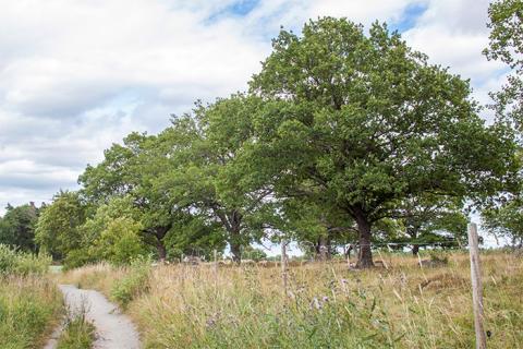 Ekarna i Täby – en guide till Täbys ekar