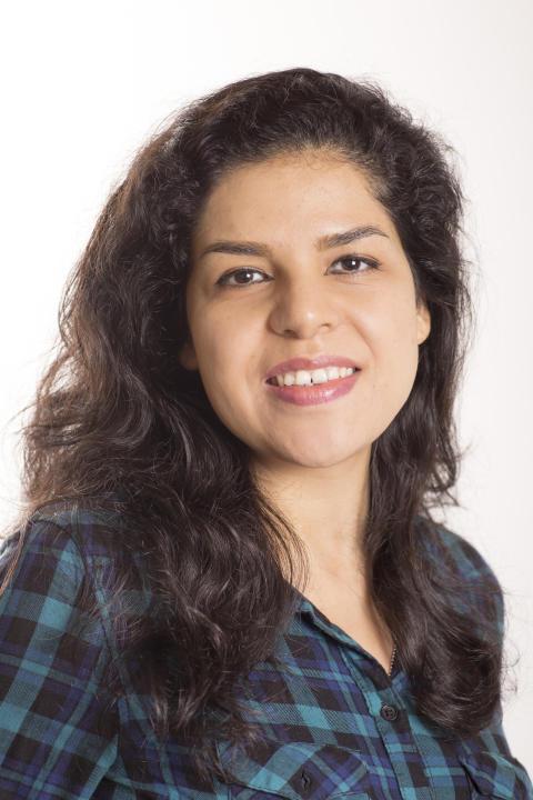 Razieh Hashemi Sanatgar