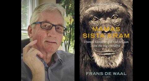 Sverige-aktuelle Frans de Waal tilldelas PEN-priset för kommande Mamas sista kram