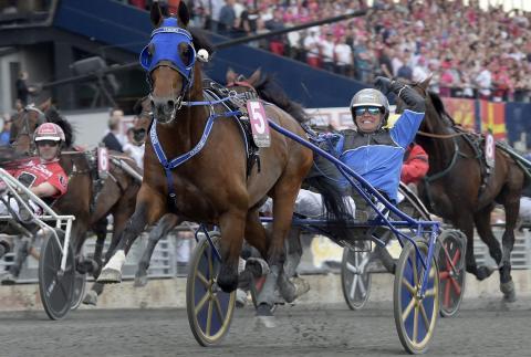 Timoko - vinnare Elitloppet 2017