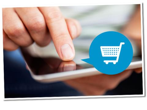 EU-sikkerhed en »bjørnetjeneste« for dansk e-handel?