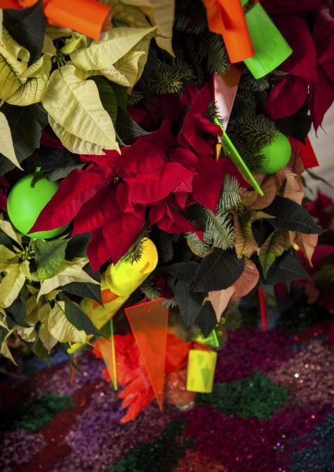Färgstark festdekoration med julstjärnor 3