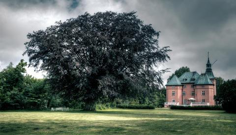 Gärsnäs slott – 195 000 klick