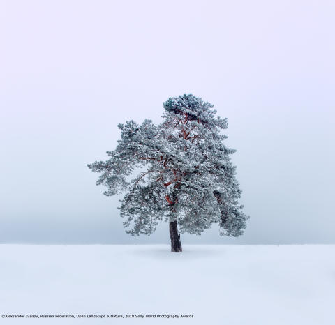 Aleksander Ivanov, Open Landscape & Nature, 2018 Sony World Photography Awards with copy