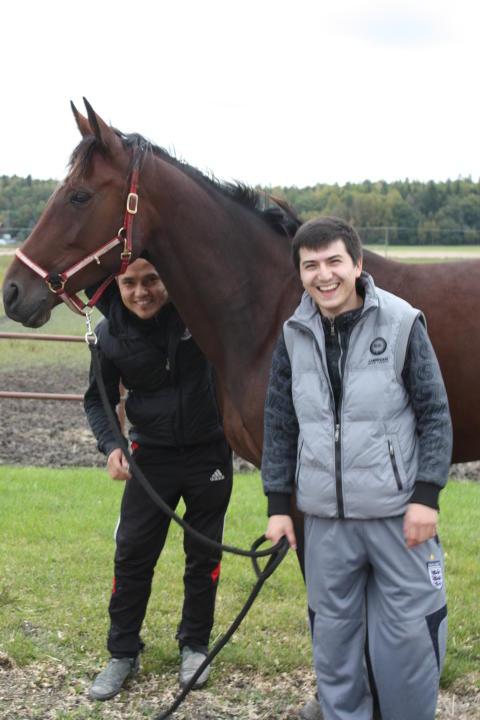 Samarbete ska skapa fler jobb inom hästnäringen