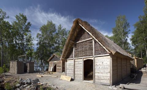 Vikingakvarter står färdigt på Birka i sommar