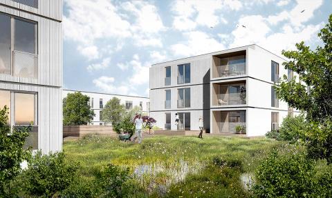 KAAI er med på vinderteamet, som skal gøre Trigeparken til et attraktivt boligområde