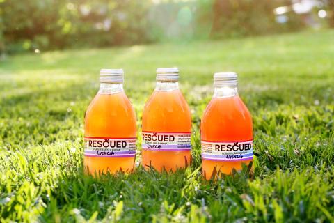 Rescued Fruits Lycklig