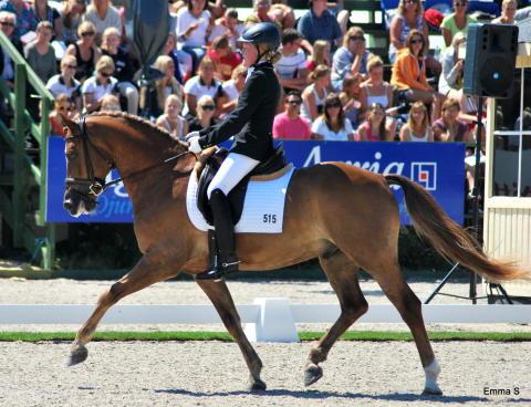 Emma Jönsson – B Capriole, segrare kval ponnydressyr