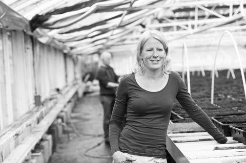 Hanna Wihlborg, Trädgårdsmästare på Orevads- och Vä Handelsträdgård