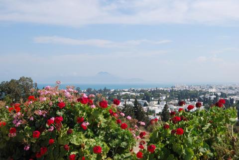 Utsikt från Kartago