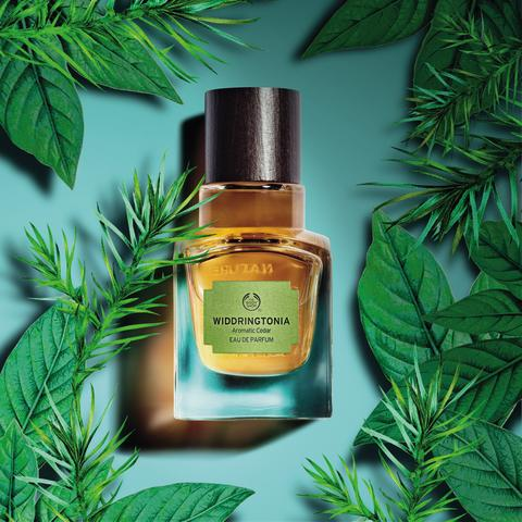 Elixirs of Nature Widdringtonia
