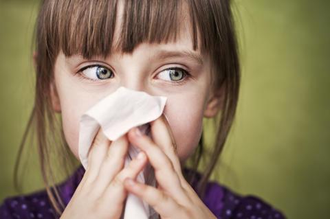 Något måste göras - det är kris inom allergivården!