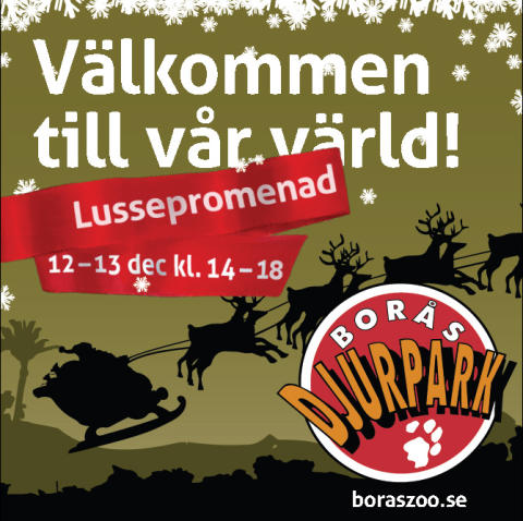 Lussepromenad i Borås Djurpark 12-13 december Kl.14.00 - 18.00