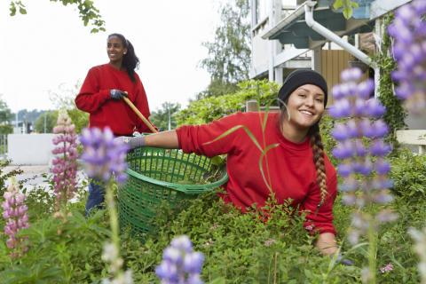Dags för ungdomar att söka 300 nya sommarjobb hos Stena Fastigheter