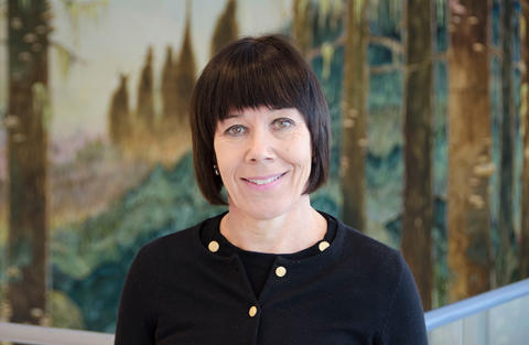 Ylva Fältholm proposed as new Vice-Chancellor of University of Gävle