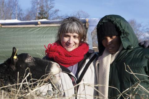 Elizabeth och Åsa hos fåren