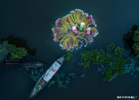 2018 SkyPixel Contest-Photo Group-First Prize-Fun-Flowers on the water