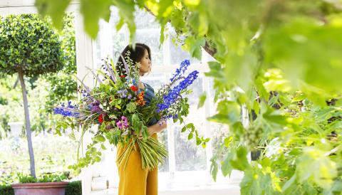 Blommor i Vinhuset