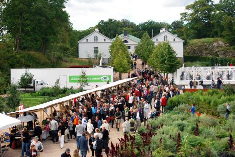 Jordens mat- ekologisk marknad i skördetid