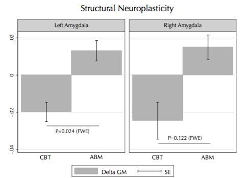 Hjärnans volym i amygdala