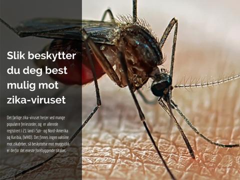 Slik beskytter du deg best mulig mot zika-viruset