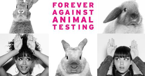 Vi tar opp kampen mot dyretesting i kosmetikkindustrien – la oss få slutt på dyretesting en gang for alle!