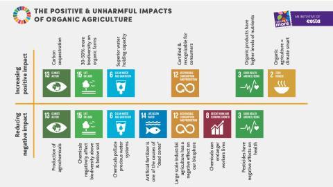 Ny rapport: Ekologiskt jordbruk bidrar till åtta av FN:s globala mål